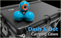Dash and Dot Case