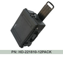 Hard Drive 12 Pack Carrying Case